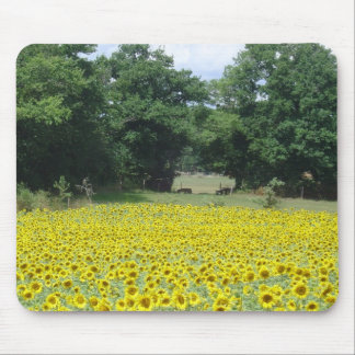 Sunflowers in Limousin Mouse Pad