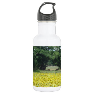 Sunflowers in Limousin Water Bottle