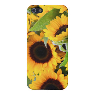Sunflowers iPhone SE/5/5s Cover