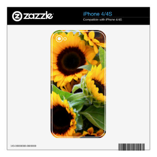 Sunflowers iphone Skin iPhone 4 Skins