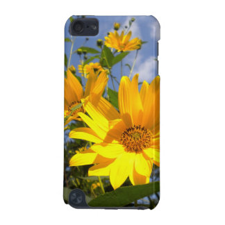 Sunflowers iPod Touch case