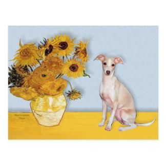 Sunflowers - Italian Greyhound 5 Postcard