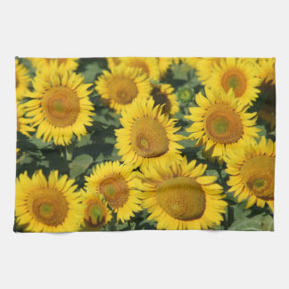 Exceptional Sunflowers Kitchen Towel 16u0026quot; ...