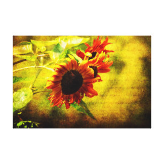 Sunflowers Lament Gallery Wrapped Canvas