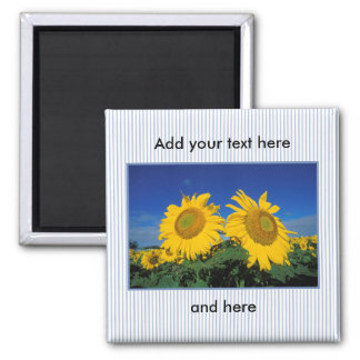 Sunflowers 2 Inch Square Magnet