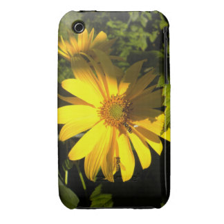 Sunflowers N Bees Iphone 3 case