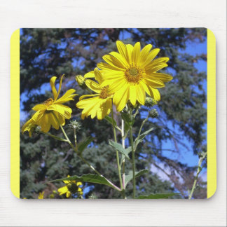 Sunflowers n Pine Mouse Pad