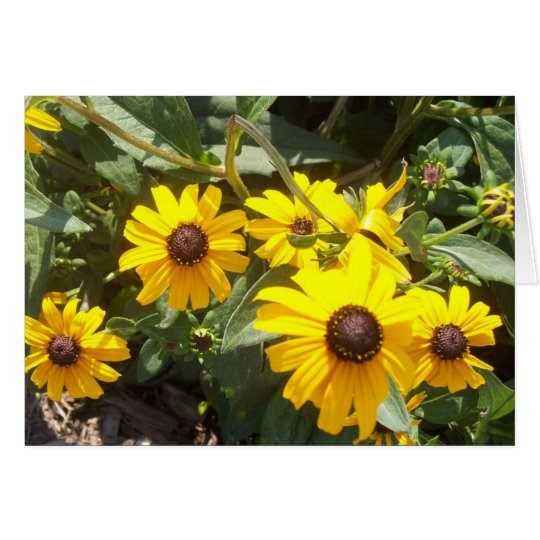 Sunflowers Notecard