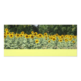 Sunflowers of Italy Card