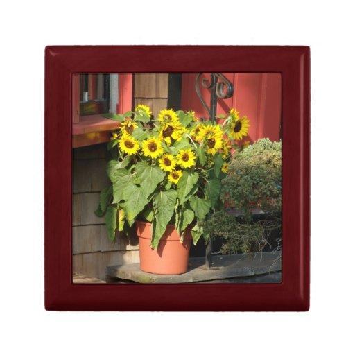 Sunflowers Orange Pot Gift Boxes