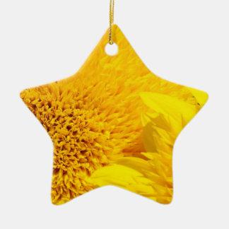 Sunflowers ornaments Star Shaped Sun Flowers