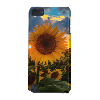 Sunflowers Phone and Device Case iPod Touch 5G Cover