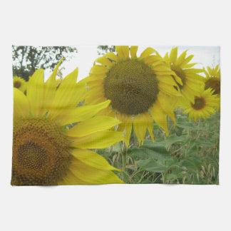 Sunflowers Photo Tea Towel 40.6 cm x 61 cm