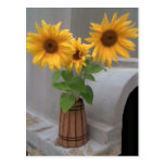 Sunflowers Post Card