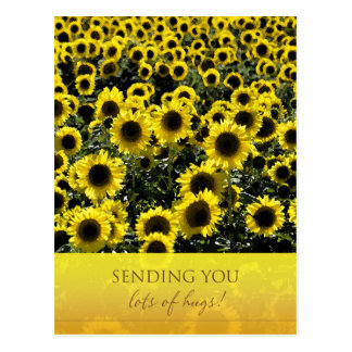 Sunflowers Postcard / Sending You Lots of Hugs