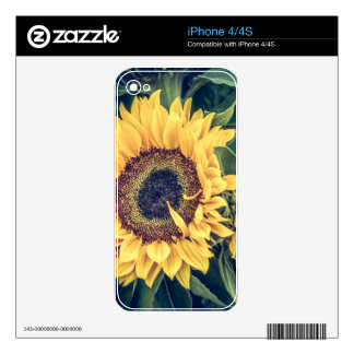 Sunflowers Skin For The iPhone 4S