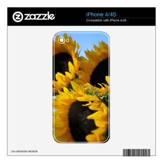 Sunflowers Skin iPhone 4 Decal