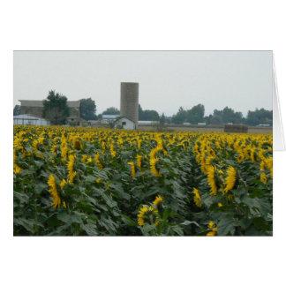 Sunflowers snd Silo Card