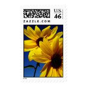 Sunflowers Stamp stamp