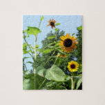 Sunflowers to the Sky! Puzzle