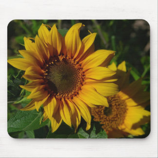 Sunflowers Yellow Mouse Pads