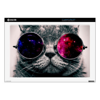 sunglasses cat decals for laptops