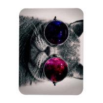 sunglasses cat magnet