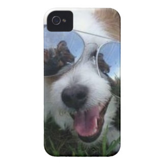 Sunglasses on dog BRIGHT FUTURE for ME Case-Mate iPhone 4 Case