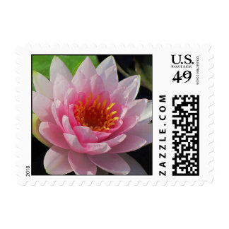Sunken Gardens Lincoln,NE Postage Stamps
