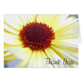 Sunkissed Calendula Card
