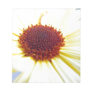 Sunkissed Calendula Notepad