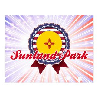 Sunland Park, NM Postcard