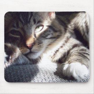 Sunlight Cat Mouse Pad