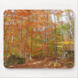 Sunlight Dappled Fall Trail at Laurel Hill Park Mouse Pad