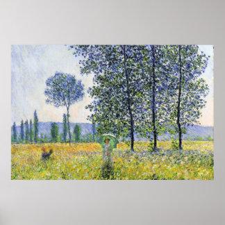 Sunlight Effect under the Poplars  Claude Monet Poster