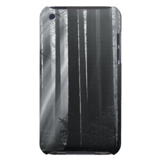 Sunlight in forest iPod touch cover