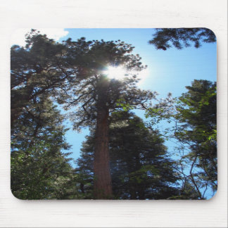 Sunlight Mouse Pad