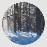Sunlight On Snow Classic Round Sticker