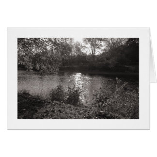 Sunlight on the Taff, Bute Park, Cardiff (Bordered Greeting Card