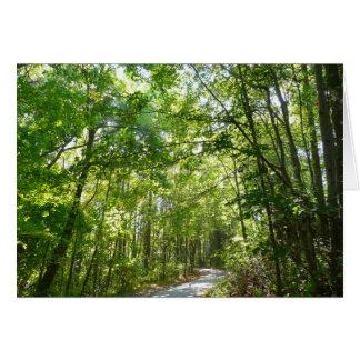 Sunlight on Wooded Path at Centennial Park Card