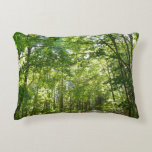 Sunlight on Wooded Path at Centennial Park Decorative Pillow