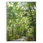 Sunlight on Wooded Path at Centennial Park Notebook