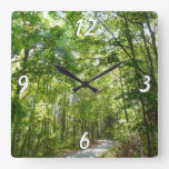 Sunlight on Wooded Path Square Wall Clock