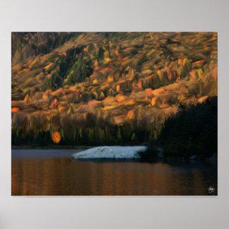 Sunlight on Woodstock Beaver Pond Poster