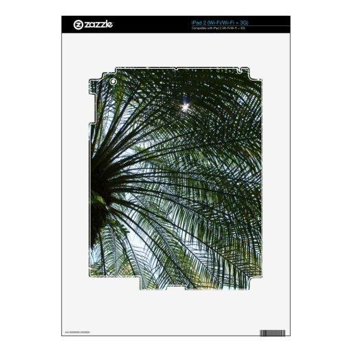 Sunlight Peeking Through Palm Tree iPad 2 Skins