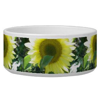 Sunlight Sunflower Bowl