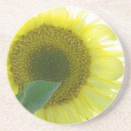 Sunlight Sunflower Coaster