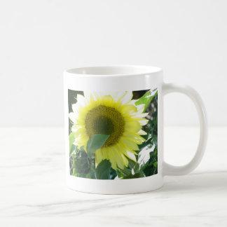 Sunlight Sunflower Mugs