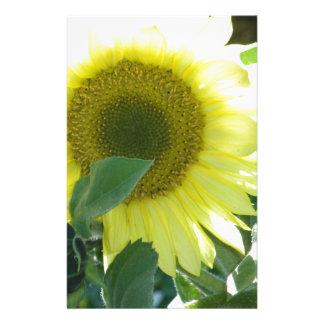 Sunlight Sunflower Stationery