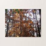 Sunlight through Fall Tree at Greenbelt Park Jigsaw Puzzle
